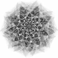 Grey Lotus (PSI 25)<br>©2013, 90x90 см, composit , plastic, digital printing with UY-curable inks